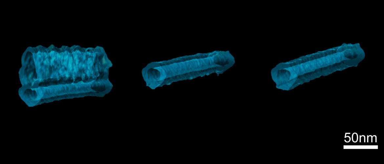 Nanofils, vue de circuits manométriques